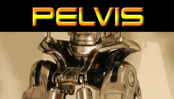 T800 Pelvis Button