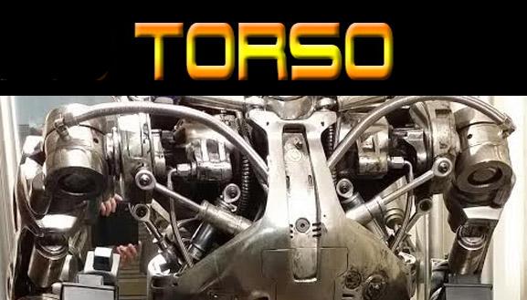 T800 Torso Button